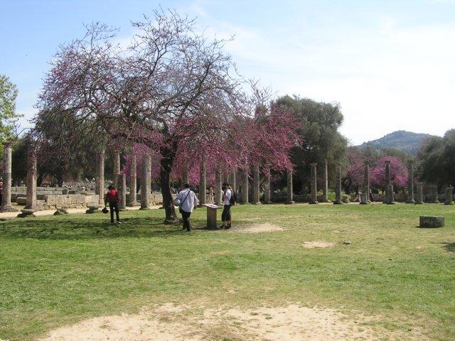 grecja-wiosna200816